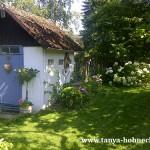 Tanya Hohneck Landgarten Hortensien