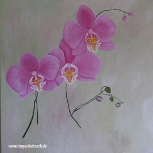 Rosa Orchidee, Phalaenopsis, Gemälde, Acrylfarbe auf Leinwand