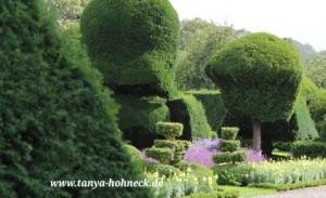 Englischer Garten-Levens Hall, Topiary, Cumbria, England