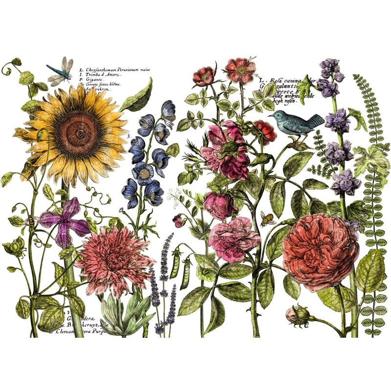 Transfer 'Botanist's Journal' von IOD (Iron Orchid Designs'